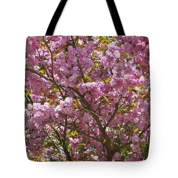 Ornamental Cherry Tree Tote Bag by Sharon Talson