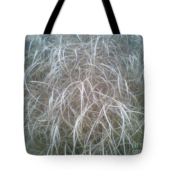 Ornamental Grasses 1 Tote Bag