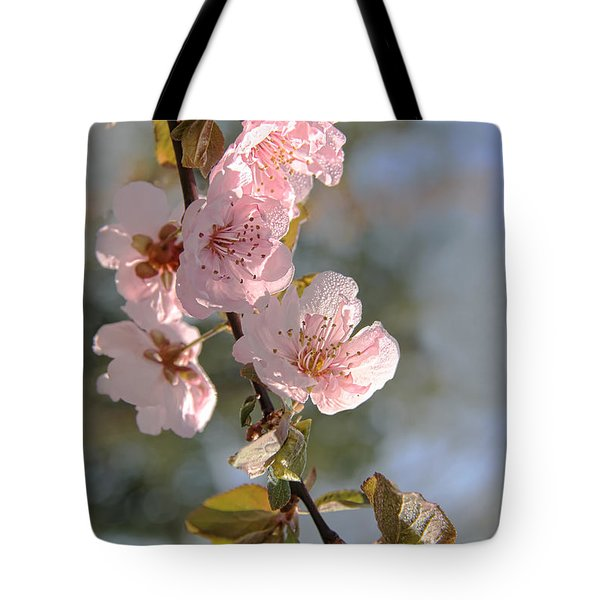 Ornamental Plum Tree Pink Flower Blossoms Tote Bag by Jennie Marie Schell