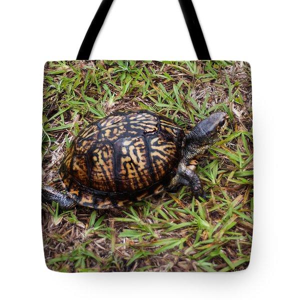 Box Turtle Tote Bag by Mechala  Matthews