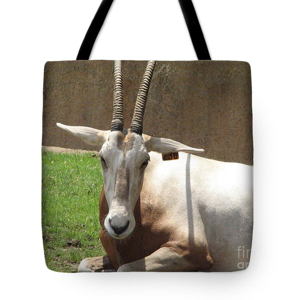 Oryx Tote Bag by DejaVu Designs