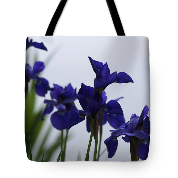 Tote Bag featuring the photograph Osaka Garden by Miguel Winterpacht