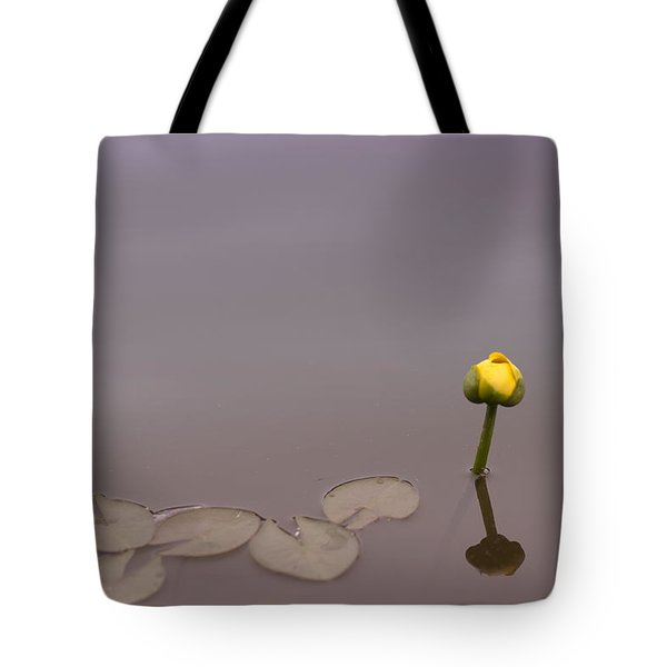 Tote Bag featuring the photograph Osaka Garden Tranquility by Miguel Winterpacht