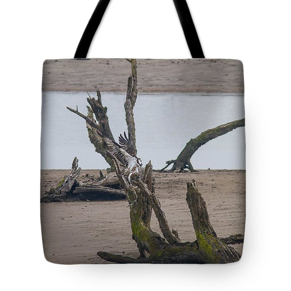 Ospray With Fish Tote Bag