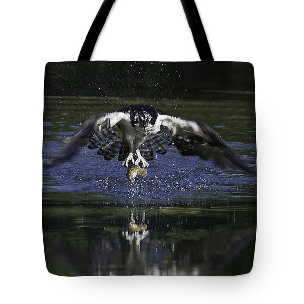 Tote Bag featuring the photograph Osprey Bird Of Prey by David Lester