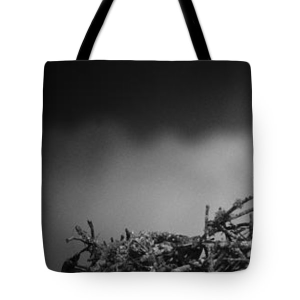 Osprey Tote Bag by Bradley R Youngberg