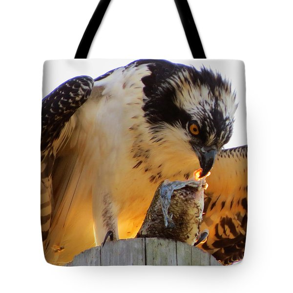 Tote Bag featuring the photograph Osprey Breakfast by Dianne Cowen