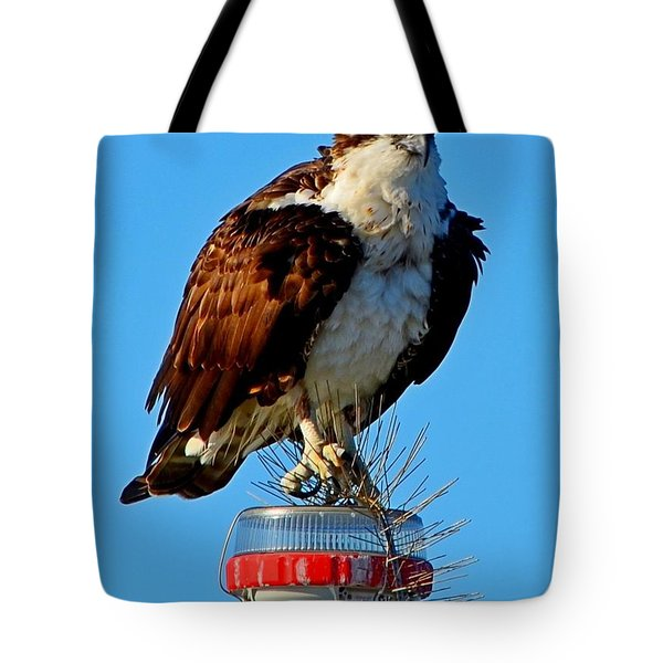 Tote Bag featuring the photograph Osprey Close-up On Water Navigation Aid by Jeff at JSJ Photography