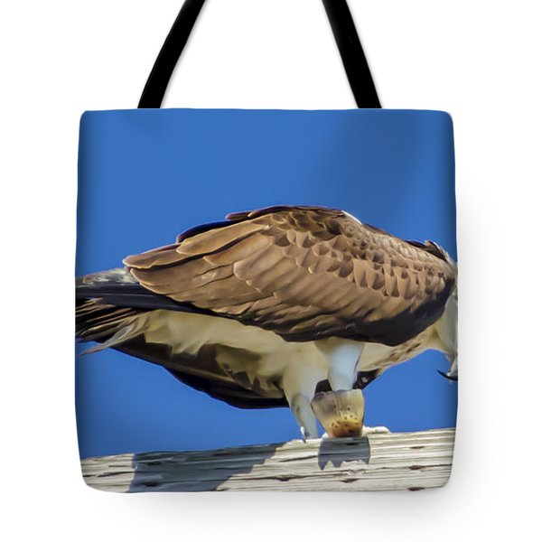 Tote Bag featuring the photograph Osprey Eating Lunch by Dale Powell