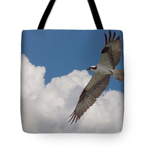 Osprey Flight Series 2 Tote Bag