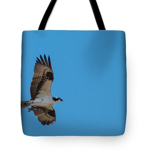 Osprey Flying Home With Dinner Tote Bag by Robert Bales