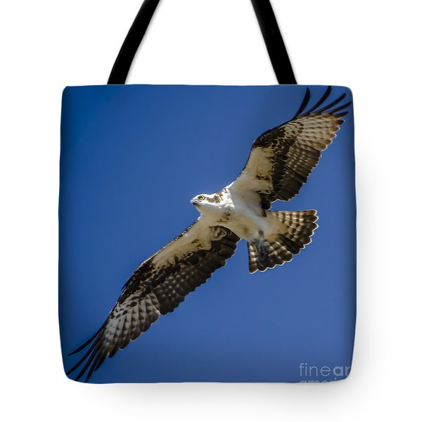 Tote Bag featuring the photograph Osprey In Flight by Dale Powell