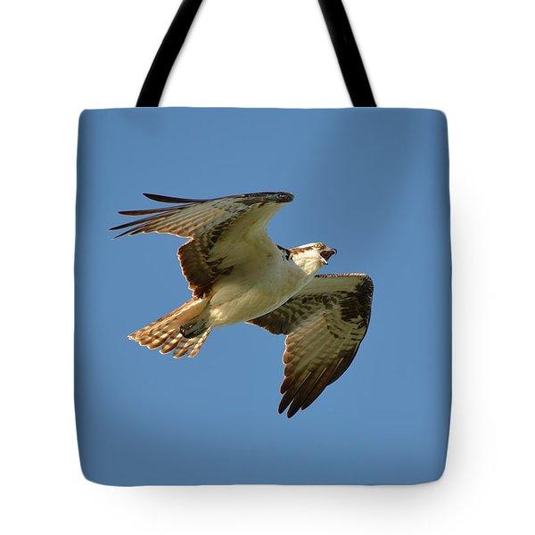 Osprey Tote Bag by James Petersen