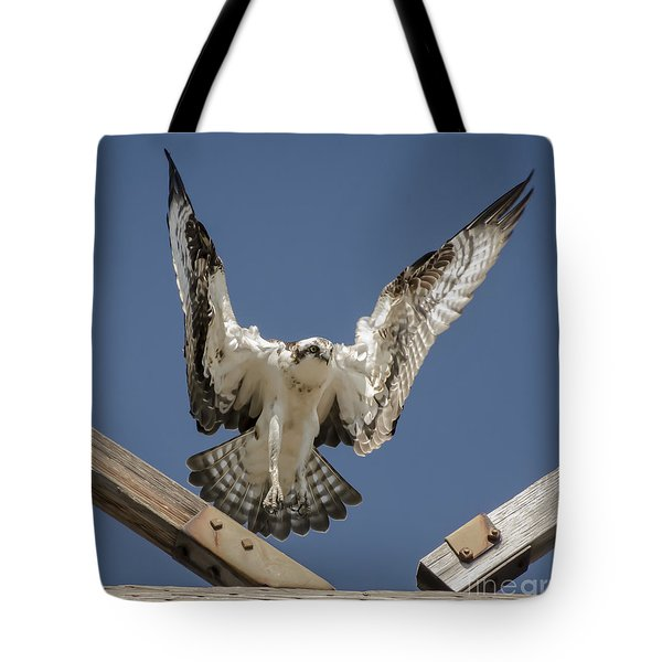 Tote Bag featuring the photograph Osprey Landing by Dale Powell