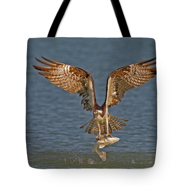 Osprey Morning Catch Tote Bag
