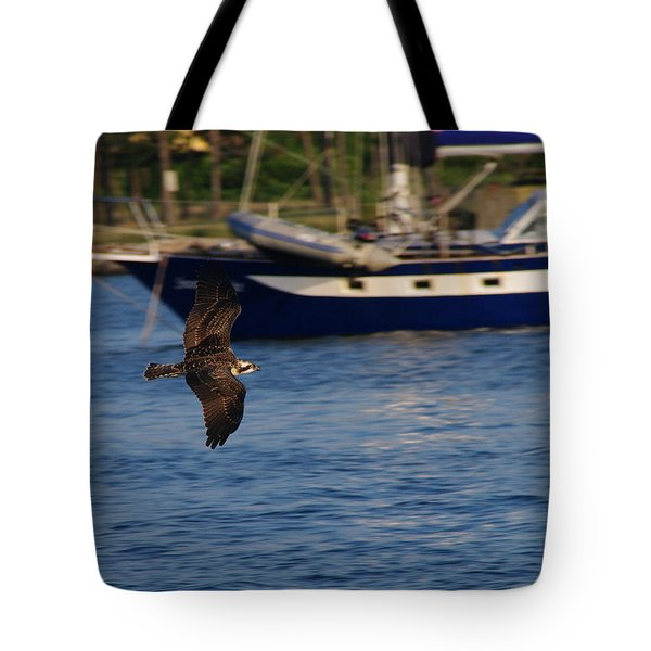 Tote Bag featuring the photograph Osprey On The Hunt by Greg Graham