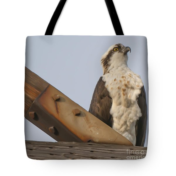 Tote Bag featuring the photograph Osprey -seahawk by Dale Powell