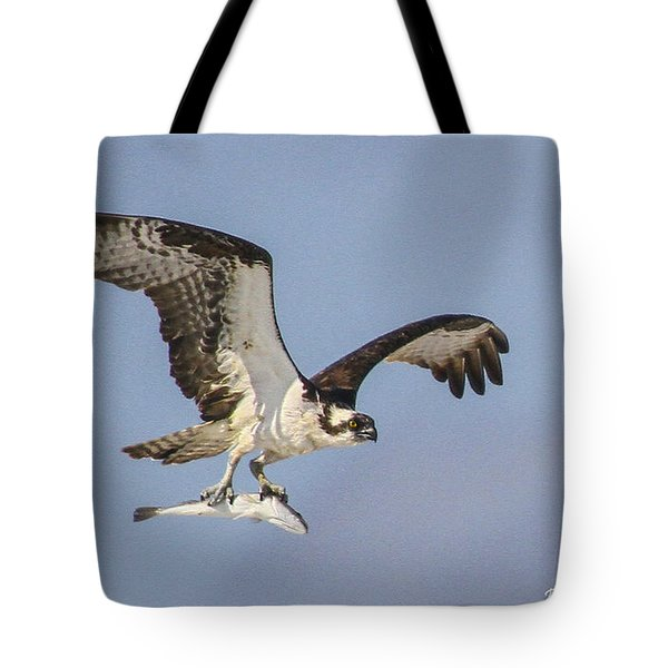 Osprey With Dinner Tote Bag