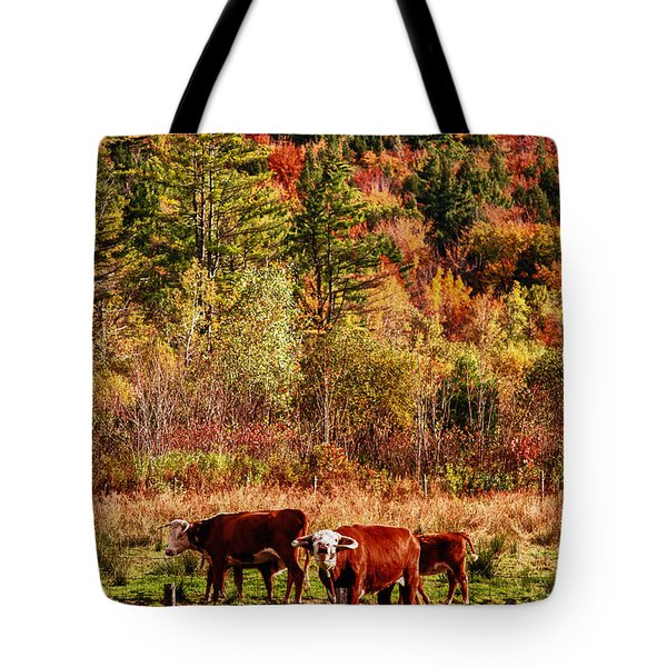 Cow Complaining About Much Tote Bag by Jeff Folger
