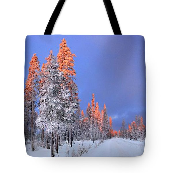 Other Side Of A Winter Sunset Tote Bag by David Andersen