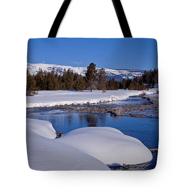 Tote Bag featuring the photograph Otter Creek by Jack Bell