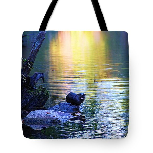 Otter Family Tote Bag by Dan Sproul