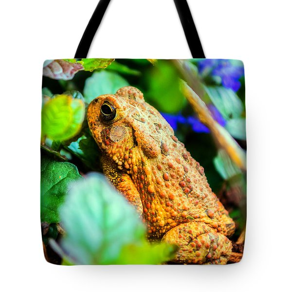Our Backyard Visitor Tote Bag