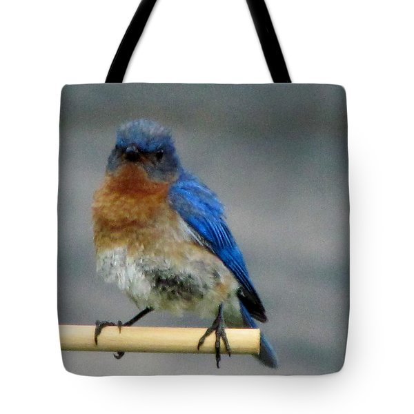 Our Own Mad Bluebird Tote Bag