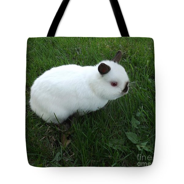 Out For A Stroll Tote Bag by Sara  Raber