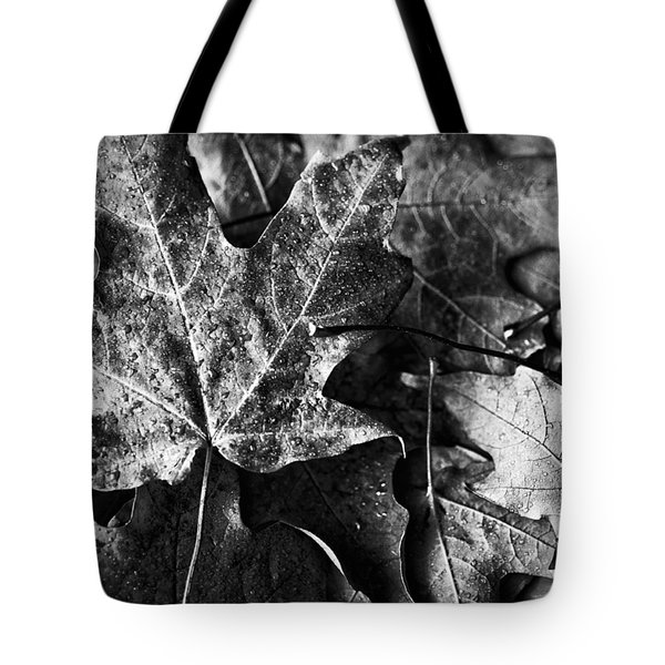 Out In The Cold Tote Bag by Christi Kraft