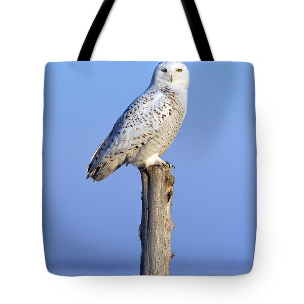 Out In The Open Tote Bag by Tony Beck