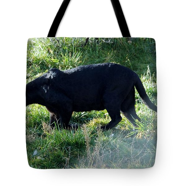Out Of Africa  Black Panther Tote Bag