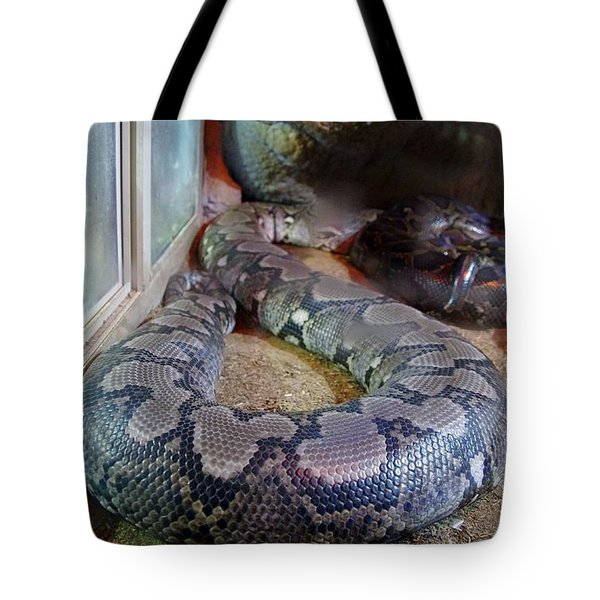 Out Of Africa  Black Snake Tote Bag