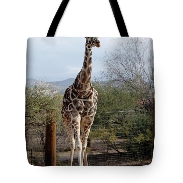 Out Of Africa  Giraffe 1 Tote Bag