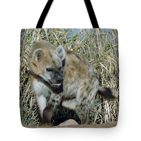 Out Of Africa  Hyena 2 Tote Bag