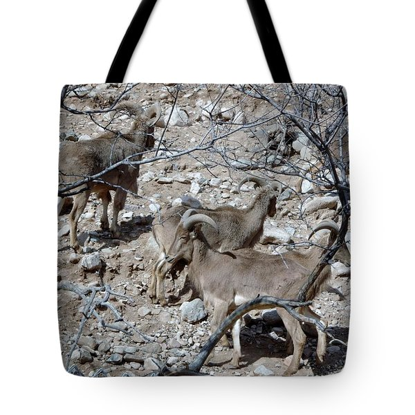 Out Of Africa  Mountain Goats Tote Bag