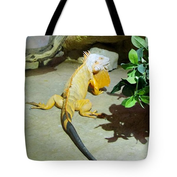 Out Of Africa Orange Lizard 2  Tote Bag
