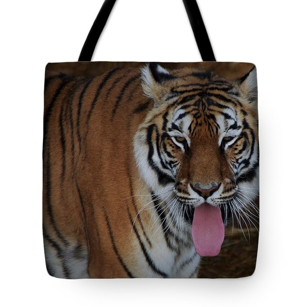 Out Of Africa  Tiger 2 Tote Bag