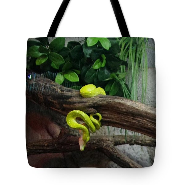 Out Of Africa Tree Snake Tote Bag