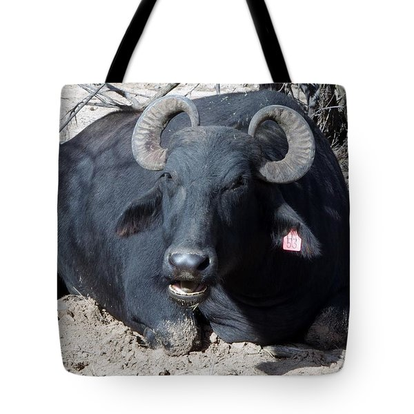 Out Of Africa  Water Buffalo Tote Bag