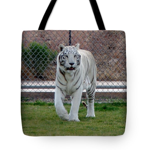 Out Of Africa White Tiger Tote Bag