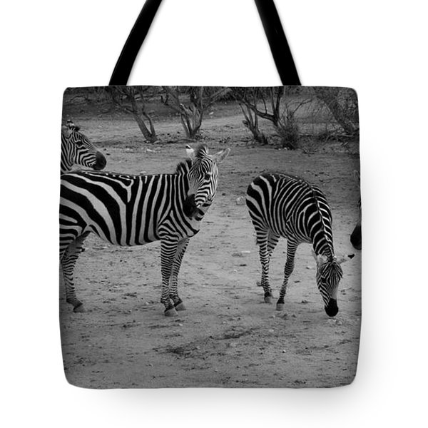 Out Of Africa  Zebras Tote Bag