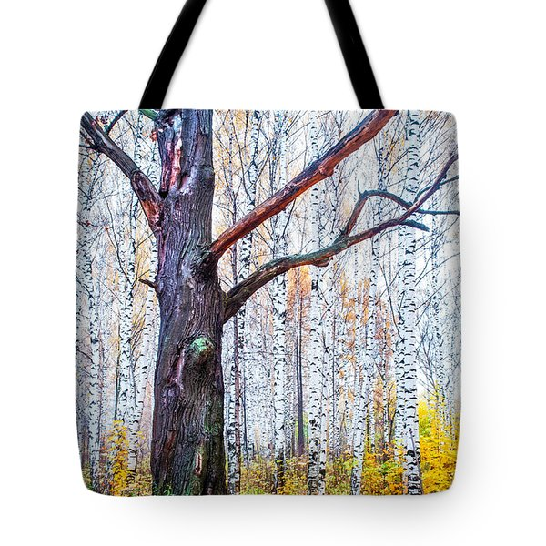 Out Of The Crowd. King And His Entourage Tote Bag by Jenny Rainbow