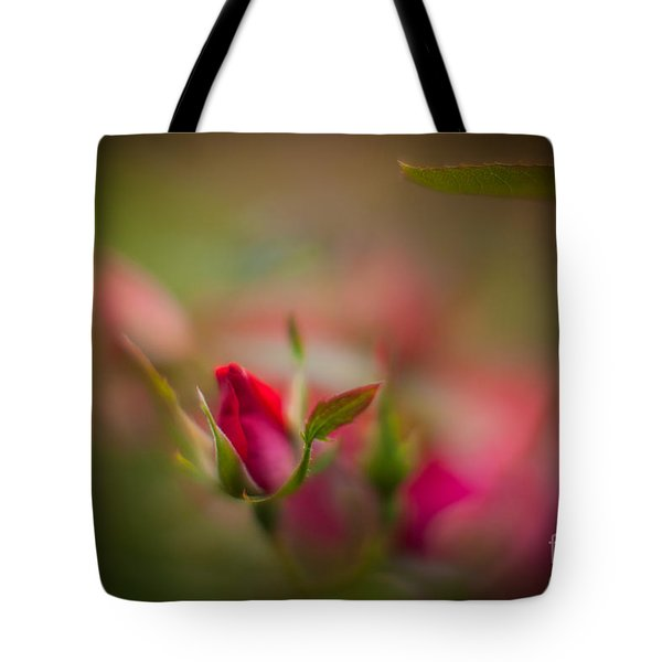 Out Of The Mist Tote Bag by Mike Reid