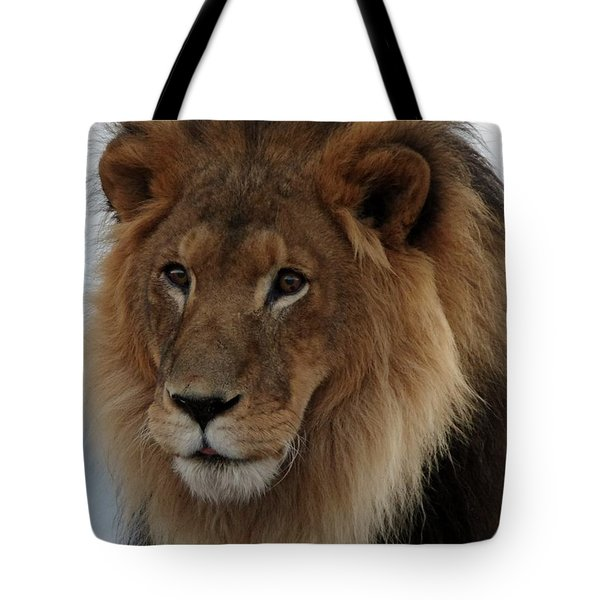 Out Ofafrica  Lion 4 Tote Bag