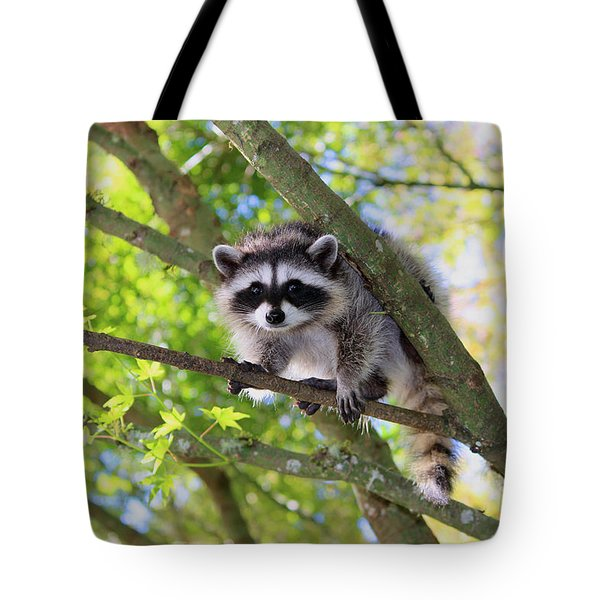 Out On A Limb Tote Bag by Kym Backland