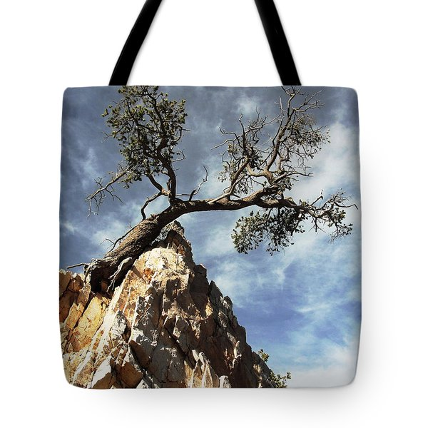 Tote Bag featuring the photograph Hung Over by Natalie Ortiz