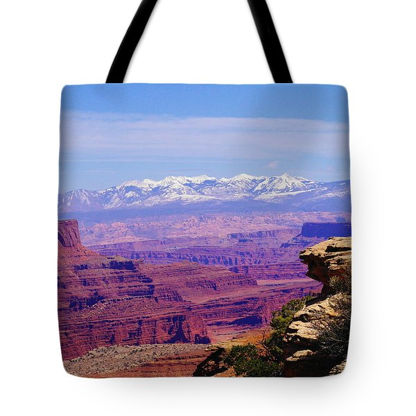 Overlooking Canyon Land Tote Bag