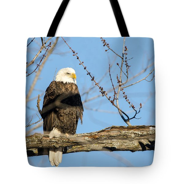 Overlooking Freedom Tote Bag