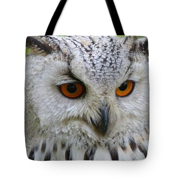 Tote Bag featuring the photograph Owl Bird Animal Eagle Owl by Paul Fearn